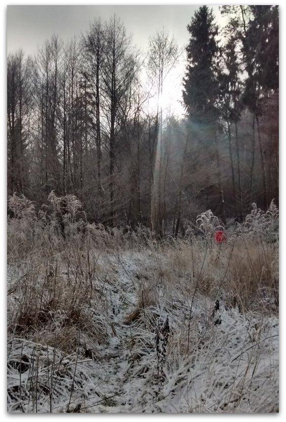 Zimą...          Fot. Agata Lubańska